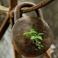 ۱۴ گام در مسیر کسب امید به زندگی