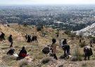 استقبال شهروندان شیراز در طرح زاگرس سبز و کاشت بذر گیاهان بومی در ارتفاعات دراک